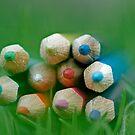 Colours by Sangeeta