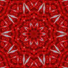 Petals of Red by jasetdesign