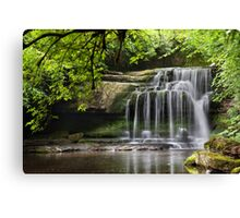 Walden Beck - West Burton Canvas Print