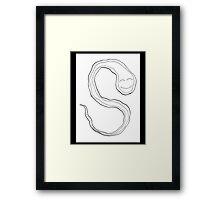 """s"" flame... Framed Print"