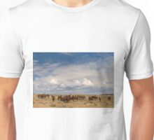 Big Horn Brood Mares    Unisex T-Shirt