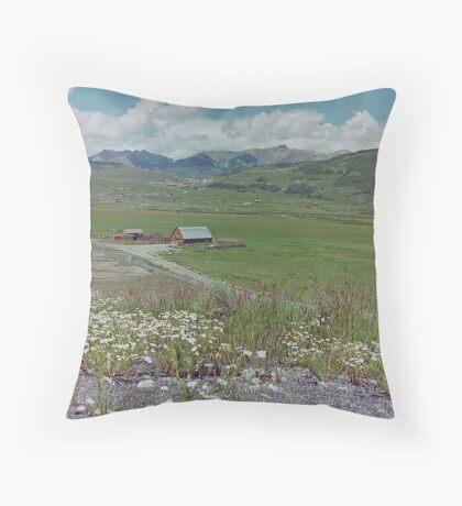 Near Crested Butte, Colorado, USA Throw Pillow