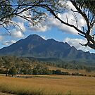 Mount Barney by Kym Howard