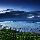 Long Reef Cold Morning  by keoneandkenya