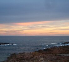 NSW Coast, 2 of 3 by justineb