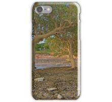 roebuck bay mangroves  iPhone Case/Skin