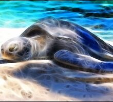 Solo on the Sand: Gentle Giant by Cherubtree