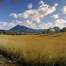 Mt Barney Panorama by Kym Howard