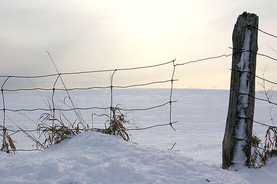 Broken Fence by rokudan