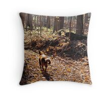 Chloe on a dry autumn creek bed Throw Pillow