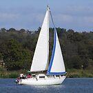 Bi Loup in the Foleux regatta by Alan Gillam