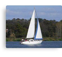 Bi Loup in the Foleux regatta Canvas Print