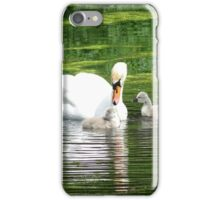 Swan and Cygnets iPhone Case/Skin