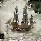 HMS Bounty . by Irene  Burdell
