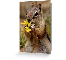 Dandelion Delight #3 Greeting Card