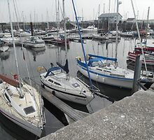 Boats in a Marina by tina70