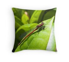 The Red dragon fly Throw Pillow