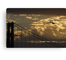 Golden Flight Canvas Print