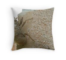 Proof of Summer in Texas Throw Pillow