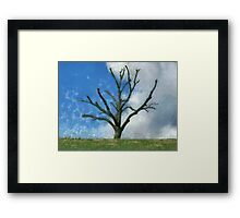 Trimmed Tree Framed Print