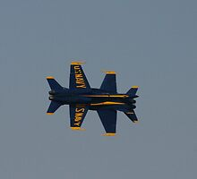 Blue Angels ~ two for one by fototaker