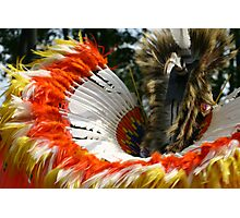 Feather Bustle Photographic Print