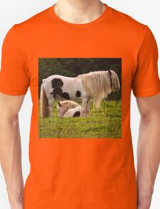 Mother and foal Unisex T-Shirt