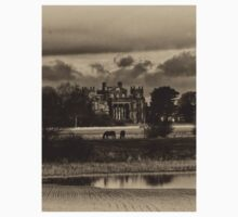 Seaton Delaval Hall in antiqued sepia Kids Tee