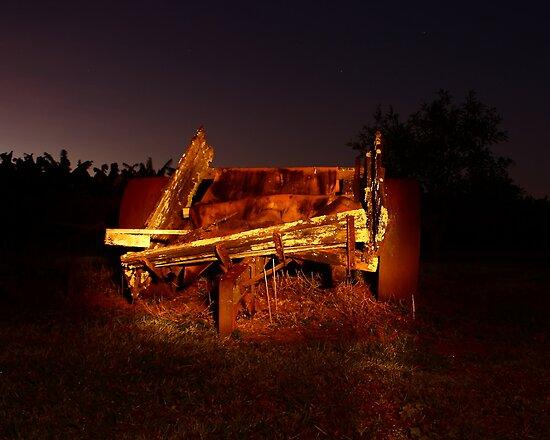 Stevo's rock cart by Ron  Wilson