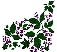 Blackberries & Paisley Leaves by PrivateVices