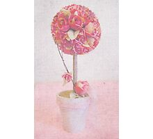Pink Topiary Photographic Print