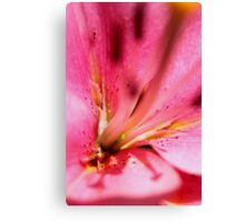 """Commercial"" macro Canvas Print"