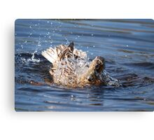 Cor! Its Wet Innit! 2 Canvas Print