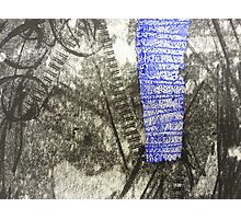 Laddered Blue Photographic Print