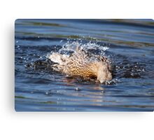 Cor! Its Wet Innit! 3 Canvas Print