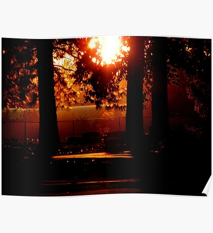 Silhouetted Memories Poster