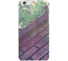 Brickies iPhone Case/Skin
