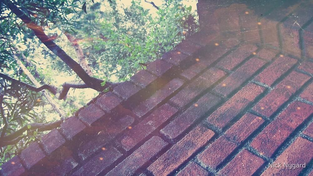 Brickies by Nick Nygard