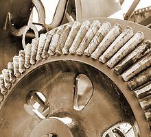 Big Wheels Keep on Turning by Susan Werby