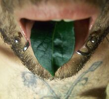 photography-green man- leaf mouth by Gema Sharpe