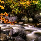 EARLY AUTUMN IN THE HIGH PEAKS by MIKESANDY