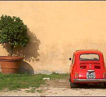 Fiat with Flowerpot by Alan Abriss