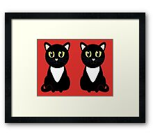 Two Black and White Cats Framed Print
