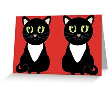 Two Black and White Cats Greeting Card