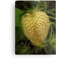 Not Berry Red Yet Metal Print
