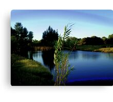 peaceful serenity. Canvas Print