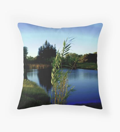 peaceful serenity. Throw Pillow