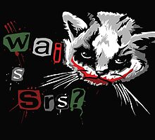 Why so serious cat by funnyshirts