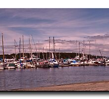 Port McNeil Marina by Gail Bridger