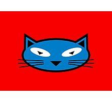 Blue Kitty Photographic Print